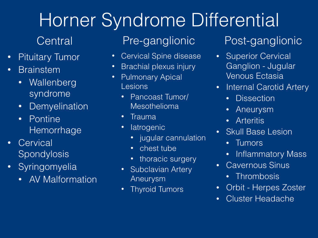 Horner Syndrome Grand Rounds .017.jpeg